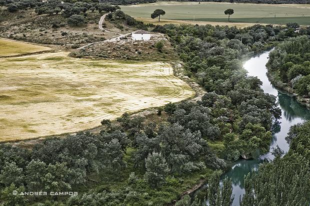 El Tajo a su paso por Zorita de los Canes (Guadalajara)