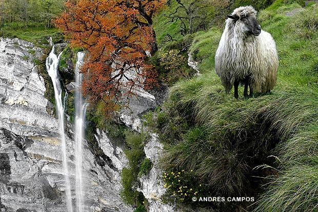 Cascada de Goiuri (Álava)