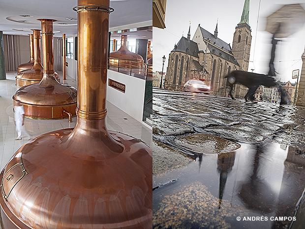 Fábrica de cerveza y plaza mayor